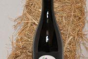 Strawberry wine (2010) – 11% Alc/Vol